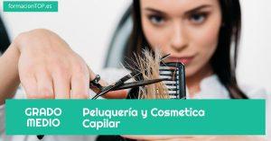 Peluquer铆a y Cosmetica Capilar